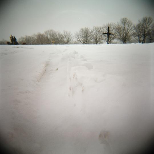 Cimetière Notre Dame des neiges / Mtl, 2008 / Annie-Ève Dumontier