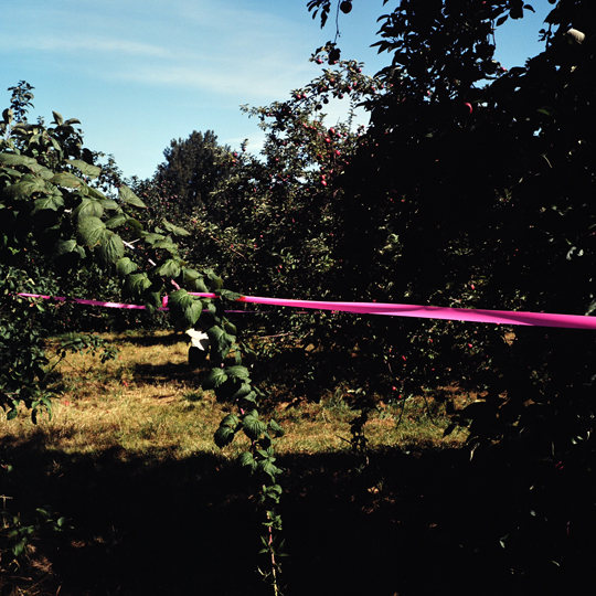 Vergé, la bonté de la pomme /Oka, p.Q, 2009 / Annie-Ève Dumontier