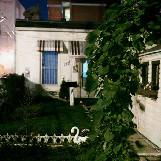 HMO / Montréal, p.Q, 2004 / Annie-Ève Dumontier